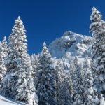 runners-head-winter-ski-tour-snow-landscape-51382